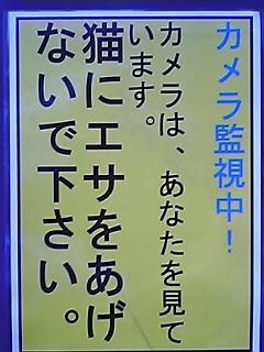 060801_095801